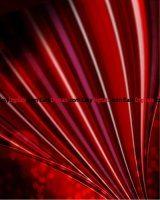 backdrops-vol300017