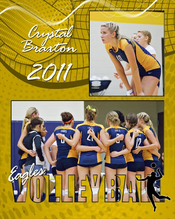 sports volleyball cutouts vol 14 photoshop and elements