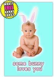 bunny3-nl.jpg